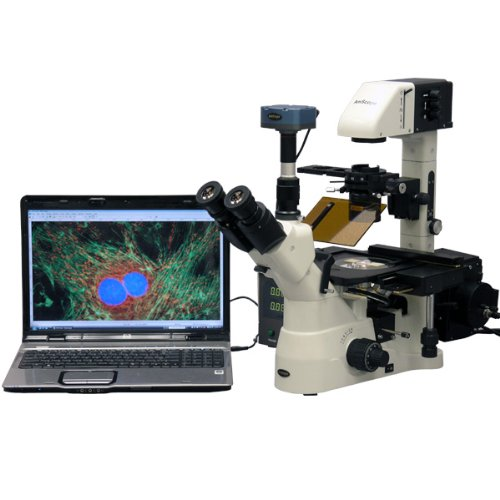 AmScope-IN480TA-FL-MF-Digital-Long-Working-Distance-Inverted-Fluorescence-Trinocular-Microscope-40x-900x-WH10x-Plan-and-WH15x-Super-Widefield-Eyepieces-Brightfield-and-Phase-Contrast-Objectives-30W-Ha