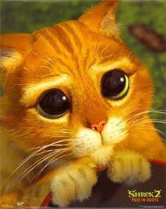 Amazon.com: Shrek 2 Movie Poster Puss in Boots Cute Cat