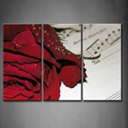 Modern Home Decoration painting 3 Panel Wall Art Red Musical Water Drops With Red Rose Pictures Print On Canvas Flower The Picture piece