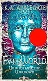 Understand the Unknown (Everworld)
