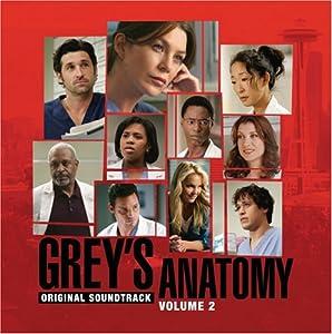 Grey's Anatomy Vol.2