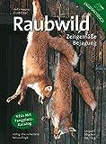Raubwild: Zeitgemäße Bejagung