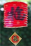Good Fortune Paper Lantern