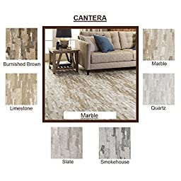 5\'x8\' Burnished Brown - CANTERA Brush Strokes - Custom Carpet Area Rug - 40 Oz. Tufted, Pinpoint Saxony - Nylon by Milliken (6 Colors to Choose From)