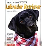 Training Your Labrador Retriever (Training Your Dog) ~ September B. Morn