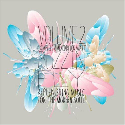 Amazon.com: Ben Watt, Justin Martin, Ben Watt: Buzzin' Fly Volume 2