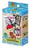 銀魂゜ ブックマスコット BOX商品 1BOX=8個入り、全8種