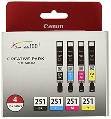 Esmezon Compatible Canon Ink Cartridges PGI 250XL CLI 251XL