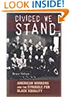 Divided We Stand: American Workers and the Struggle for Black Equality (Politics and Society in Twentieth-Century America)