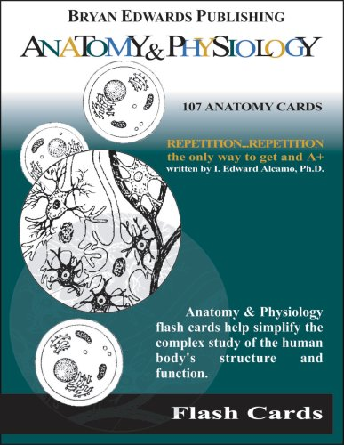 Anatomy and Physiology Study Tips | How to ACE Anatomy ...