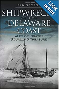 Shipwrecks of the Delaware Coast: Tales of Pirates, Squalls and Treasure (Disaster) by Pam George