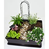 Fairy Garden Kit with Fairy Dust, Garden Box, Birdbath, Arbor, Wheelbarrow and Path Stones