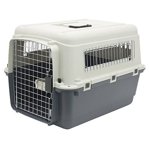 Plastic-Kennels-Rolling-Plastic-Airline-Approved-Wire-Door-Travel-Dog-Crate