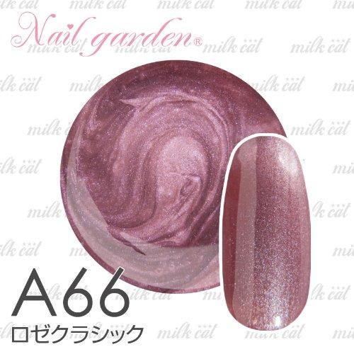 Nail garden ネイルガーデン カラージェル4g ロゼクラシック