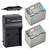 DSTE® 2x NP-FP90 Battery + DC04