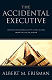 img - for The Accidental Executive: Lessons on Business, Faith and Calling from the Life of Joseph book / textbook / text book
