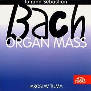 Organ Mass