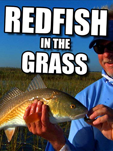 Clip: Redfish in the Grass