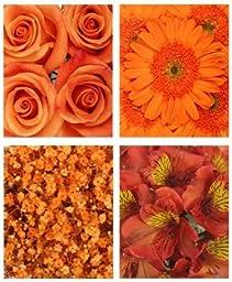 Monochromatic Orange Flowers (Gerberas, Roses, Alstroemeria and Babys Breath)