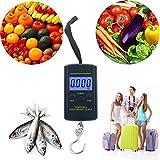 Next-shine Electronic Digital Hanging/Fish/Luggage/Kitchen Scale 0.01 lb/0.005kg, Dark Blue