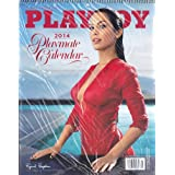 Perfect Timing - Turner 2013 Playboy Swimsuit Wall Calendar, 11 x 17 Inches (8915000)