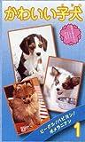 かわいい子犬 volume.1 [VHS]