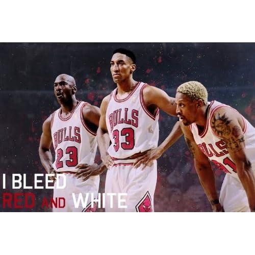 Amazon.com: EJ0210 Jordan Pippen Rodman Chicago Bulls NBA 36x24 Print