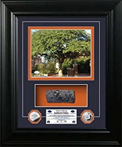 Auburn Tigers Auburn Oaks Authentic Oak Marquee Silver Coin Photo Mint by Highland Mint