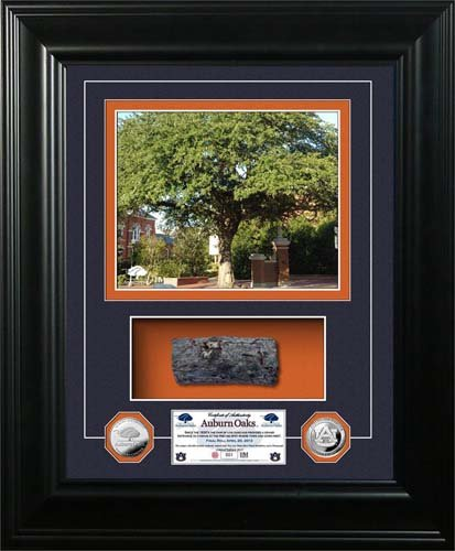 "Auburn Tigers Auburn Oaks Authentic Oak ""Marquee"" Silver Coin Photo Mint at Amazon.com"