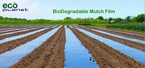 ecoplanet-bio-degradable-agricultural-plasticulture-black-mulch-film-gardening-farming-film-1-mil-3-