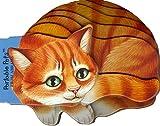 Portable Pets: Kitten (Portable Pets)