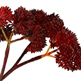 【ノーブランド品】プラスチック製 人工観葉植物 多肉植物 植物 装飾 インテリア 15種類選ぶ - 10