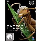 """Ameisen - Die heimliche Weltmachtvon """"Wolfgang Thaler"""""""