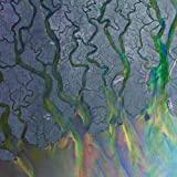 An Awesome Wave [VINYL] alt-J