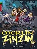 Merlin Zinzin, Tome 8 : L'elfes des brumes