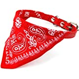 World Pride Adjustable Pet Dog Cat Bandana Scarf Collar Small Size Red