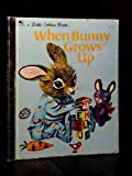 img - for When Bunny Grows Up book / textbook / text book