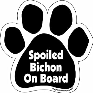 Imagine This Paw Car Magnet, Spoiled Bichon on Board, 5-1/2-Inch by 5-1/2-Inch
