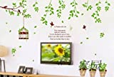 SYGA Wall Stickers Wall Decals 9035