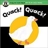 Begin Smart Quack! Quack!