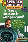 Is There a Dinosaur in Your Backyard: The Worlds Most Fascinating Fossils, Rocks, and Minerals
