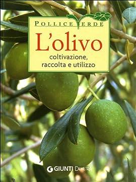 Cover L'olivo. Coltivazione, raccolta e utilizzo