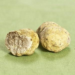 Alba Truffles - Fresh Winter White Truffles from Italy - 1 lb