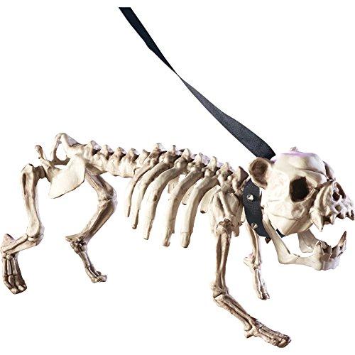Posable-Skeleton-Dog-Halloween-Decoration