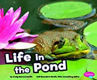 Life in a Pond (Pebble Plus: Habitats Around the World)