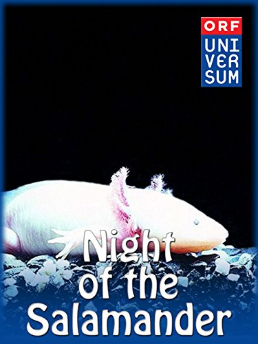 Night of the Salamander