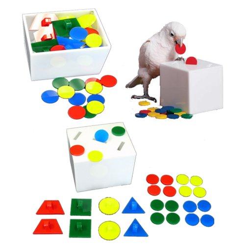 Image of Zoo-Max Teach Box & Bank Bird Toy (B009AWE4VK)