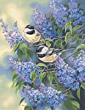 Buy Low Priced Dimensions PaintWorks/Paint By Number Chickadees & Lilacs – Great Deals