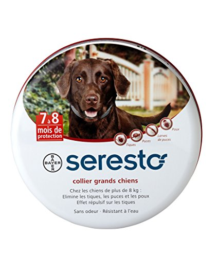 Bayer Seresto Collier antiparasitaire pour grands chiens plus de 8 kg'