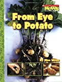 From Eye to Potato (Scholastic News Nonfiction Readers: How Things Grow)